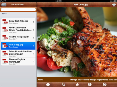 Pigeonholes iPad App Review