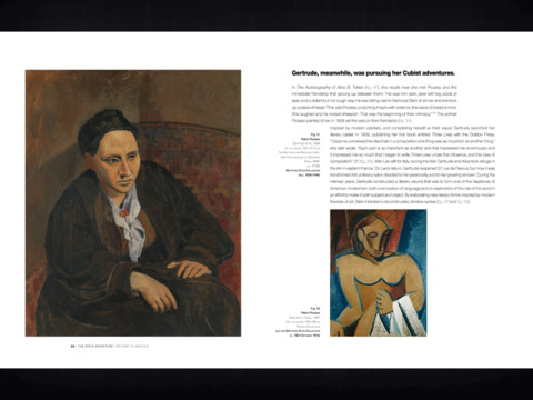 Matisse Picasso iPad App Review The Stein Collection: Matisse, Picasso and the Parisian Avant Garde E Album